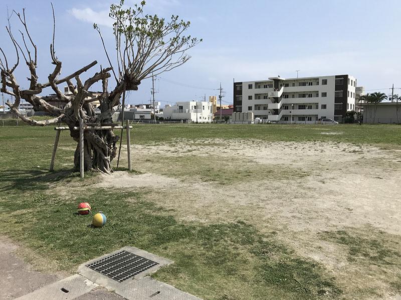 遊具エリア横の広場