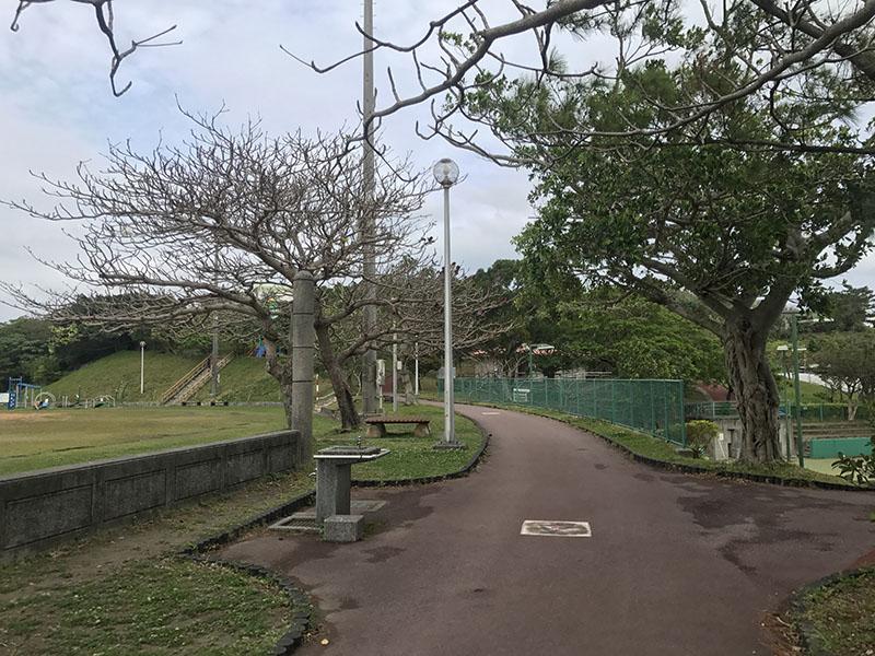 宮城公園内の遊歩道