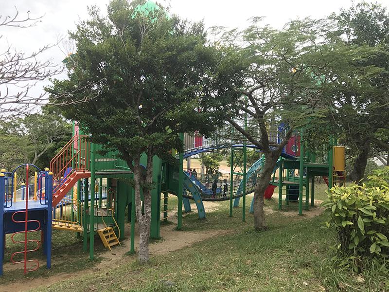 木々の緑あふれる公園